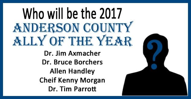 Vote Here for the 2017 Anderson County Ally of the Year!
